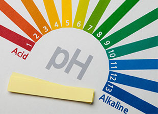 Piping Rock pH Test Strips